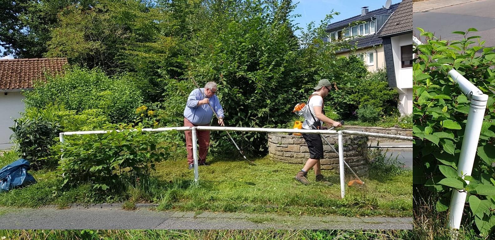 Bei der Arbeit: Markus Kipphardt und Ratsherr Guntmar Kipphardt (CDU)